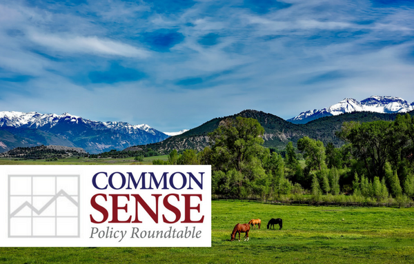 Common Sense Policy Roundtable
