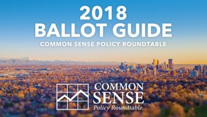 2018 Ballot Guide