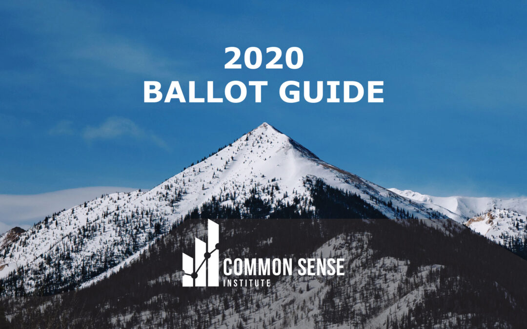 Common Sense Institute Releases 2020 Ballot Guide