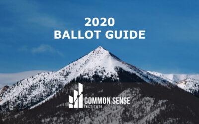 Common Sense Institute Releases 2020 Ballot Guide