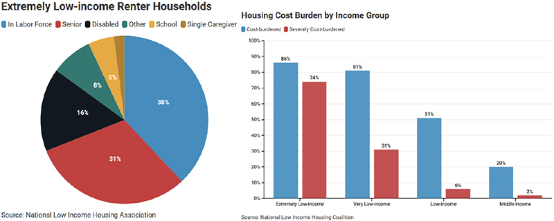 Extremely Low-income Renter Households